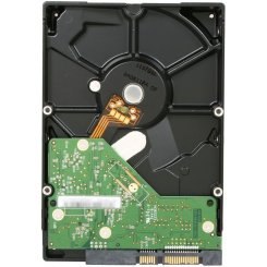 Фото Жесткий диск Western Digital Caviar Blue 250GB 16MB 3.5
