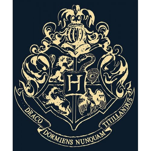 Фото Куртка ABYstyle Harry Potter M (ABYSWE039M) Black/White
