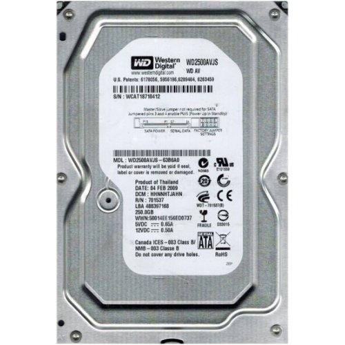 Фото Жесткий диск Western Digital AV 250GB 8MB 3.5
