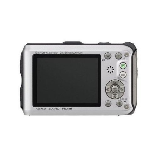 Фото Цифровые фотоаппараты Panasonic DMC-FT4EE-S Silver