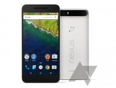 Фото Появилось официальное изображение смартфона Nexus 6P от Huawei